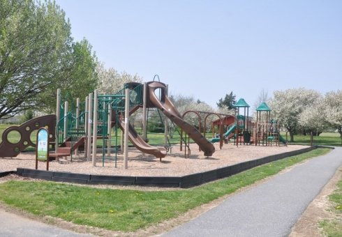 green and brown playground for kids
